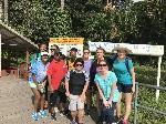Rainforest Excursion Guyana